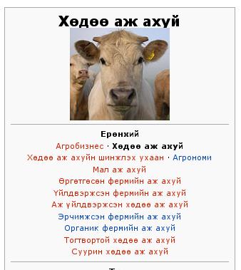 Ногохуйц